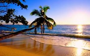 Picture Palma, the ocean, shore