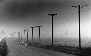 Picture fog, posts, 150
