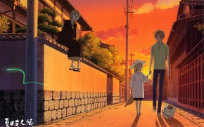 Picture cat, trees, street, posts, the fence, the evening, walk, natsume yuujinchou, Fox, the Natsume book …