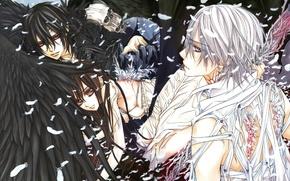 Picture wings, feathers, skull, Vampire Knight, Zero Kiryu, Yuki Cross, Kaname Kuran