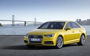 Picture Audi, quattro, TFSI, S-line