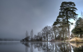 Picture the sky, water, trees, fog, lake, river, house