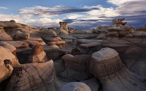 Picture stones, desert, Bisti Badlands