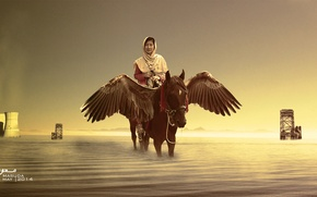 Picture sea, wings, horse, she, worrior, fairtale, parry