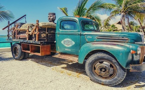 Picture car, vintage, sky, trees, sea, style, old, landscapes, sun, truck, situations, bags, palm, roadside assistance