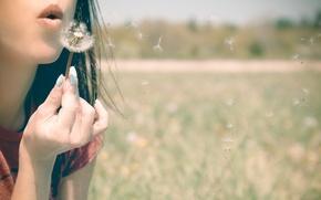 Picture girl, mood, dandelion