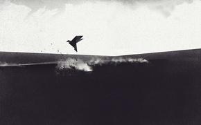 Picture Minimalism, Bird, Origami