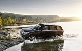 Picture car, machine, Range Rover, range Rover, Land Rower
