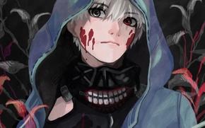 Picture blood, mask, hood, guy, anime, art, Tokyo ghoul, Tokyo Ghoul, Ken Kanek