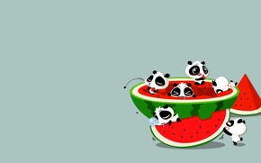 Wallpaper the situation, anime, watermelon, art, Panda
