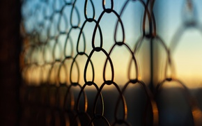 Picture autumn, the sky, macro, sunset, metal, Mesh