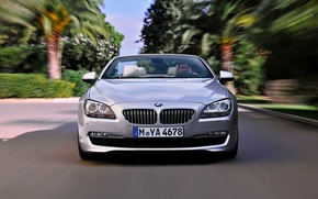 Picture BMW, Grille, BMW, The hood, Day, Lights, Driver, Room, 6 Series, The front, In Motion