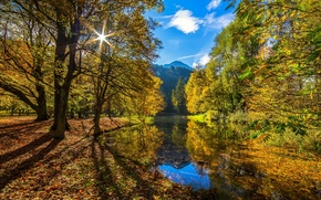 Picture autumn, forest, the sun, river, Autumn Sun