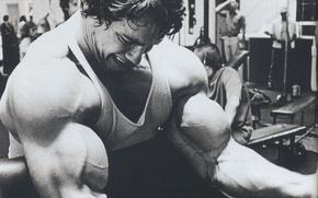 Picture Actor, Arnold Schwarzenegger, bodybuilding, young, kachek, Producer, Director, Arnold Schwarzenegger