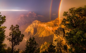 Picture light, trees, rocks, rainbow, canyon, USA