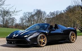 Picture Ferrari, Ferrari, 458, 2014, Pininfarina, Speciale A