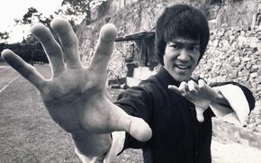 Picture sport, actor, legend, Bruce Lee, philosophy, martial arts, Jeet Kune-up