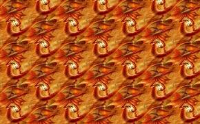 Picture fantasy, background, fire, texture, Salamander