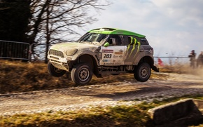Picture Mini, Dust, Sport, Speed, Race, Mini Cooper, Dakar, SUV, Rally, Mini, 2014, 203, X-raid, in …