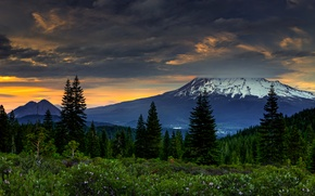 Picture forest, sunset, mountains, clouds, CA, USA