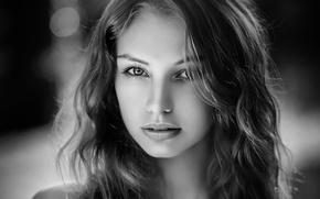 Picture long hair, beautiful, monochrome, women