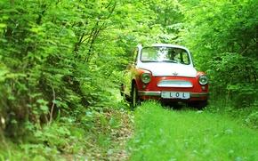 Picture greens, ZAZ, 965
