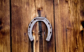 Picture horseshoe, photographer, happiness, guardian, markus spiske