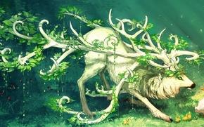 Picture grass, animal, bird, plants, horns, duck, green eyes