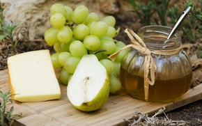 Picture cheese, grapes, pear, still life, honey