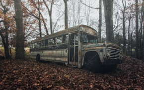 Picture autumn, leaves, bus