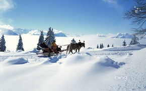 Picture sleigh, mountains, winter, horse, mood, the sun, horizon, clouds, spruce, snow, light, frost, people, tree, ...