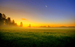 Picture field, nature, the evening, haze