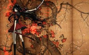 Picture katana, glasses, screen, knee, gesture, long hair, sheath, from the back, Blood-C, Kisaragi I, sideways, …