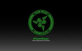 Picture Art, Green, Black, Logo, Razer, White, Hi-Tech, Minimalism, Team Razer