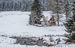 Picture Winter, Forest, House, Frost, Winter, Snow, Snowy Field, Forest