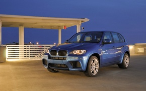 Picture Blue, BMW, Machine, Boomer, BMW, Day, the front, SUV