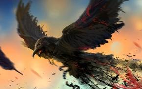 Picture bird, art, chain, Raven