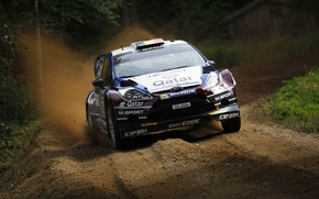 Picture Ford, Auto, Sport, Machine, Speed, Ford, Race, The hood, Day, WRC, Rally, Fiesta, Qatar