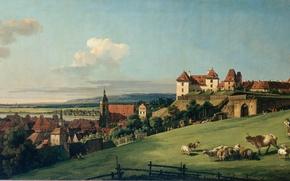 Picture castle, sheep, meadow, shepherd, Bernardo, grazing, View of Pirna from the Sonnenstein Castle, Bellotto