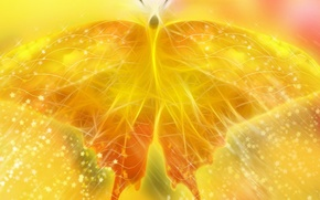 Wallpaper yellow, butterfly