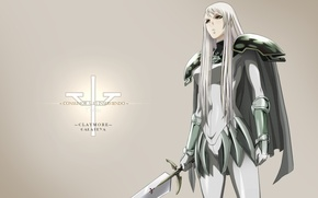 Picture logo, game, Anime, Claymore, soldier, monster, devil, weapon, woman, asian, human, armour, manga, japanese, Sword, …