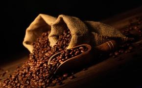 Picture grain, bag, coffee beans, bag, blade, shoulder, grain, coffee beans