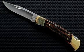Picture Knife, Hunter, Buck, 110, Folding