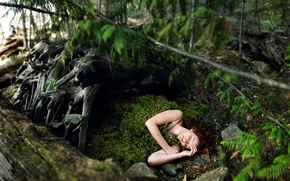 Picture forest, girl, moss, the situation