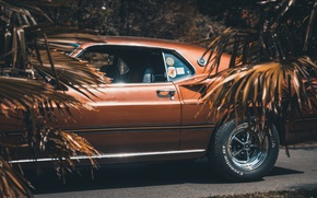 Wallpaper Ford Mustang, muscle car, 1969