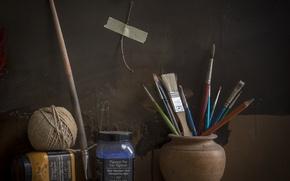 Picture tangle, briar, brush