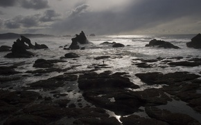 Picture USA, United States, Olympic National Park, America, United States of America, Shi-Shi Beach