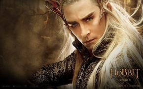 Picture elf, Lee pace, the desolation of Smaug, lee pace, hobbit: the desolation of smaug