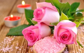 Picture roses, candles, petals, pink, buds, salt