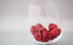 Picture macro, raspberry, glass